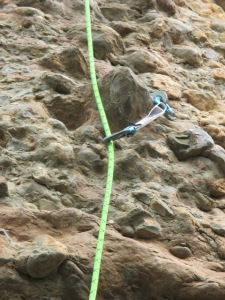 The Wild Country Proton - a high quality sport climbing draw.